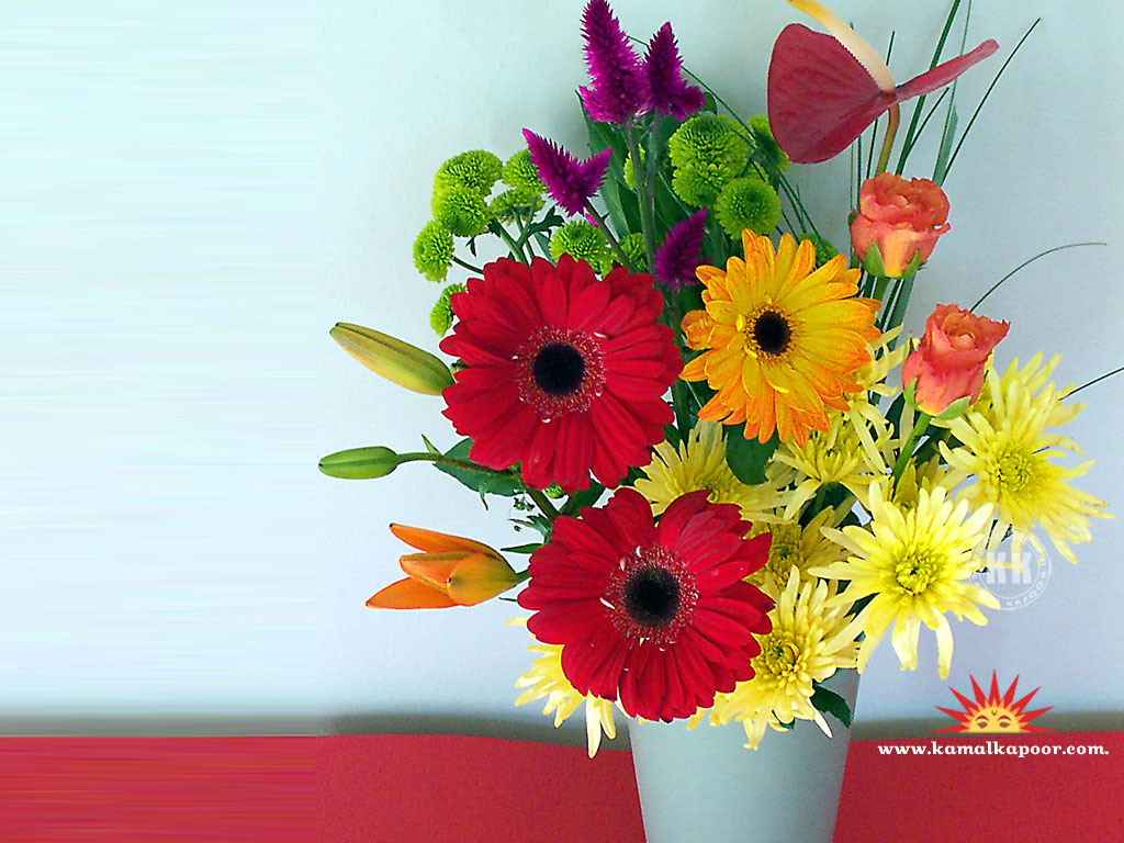 Free Computer Wallpaper Flowers Flowers wallpapers Flowers