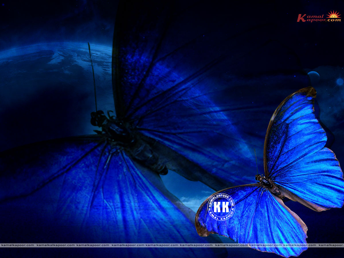 free blue color wallpapers, blue color abstract wallpapers, blue