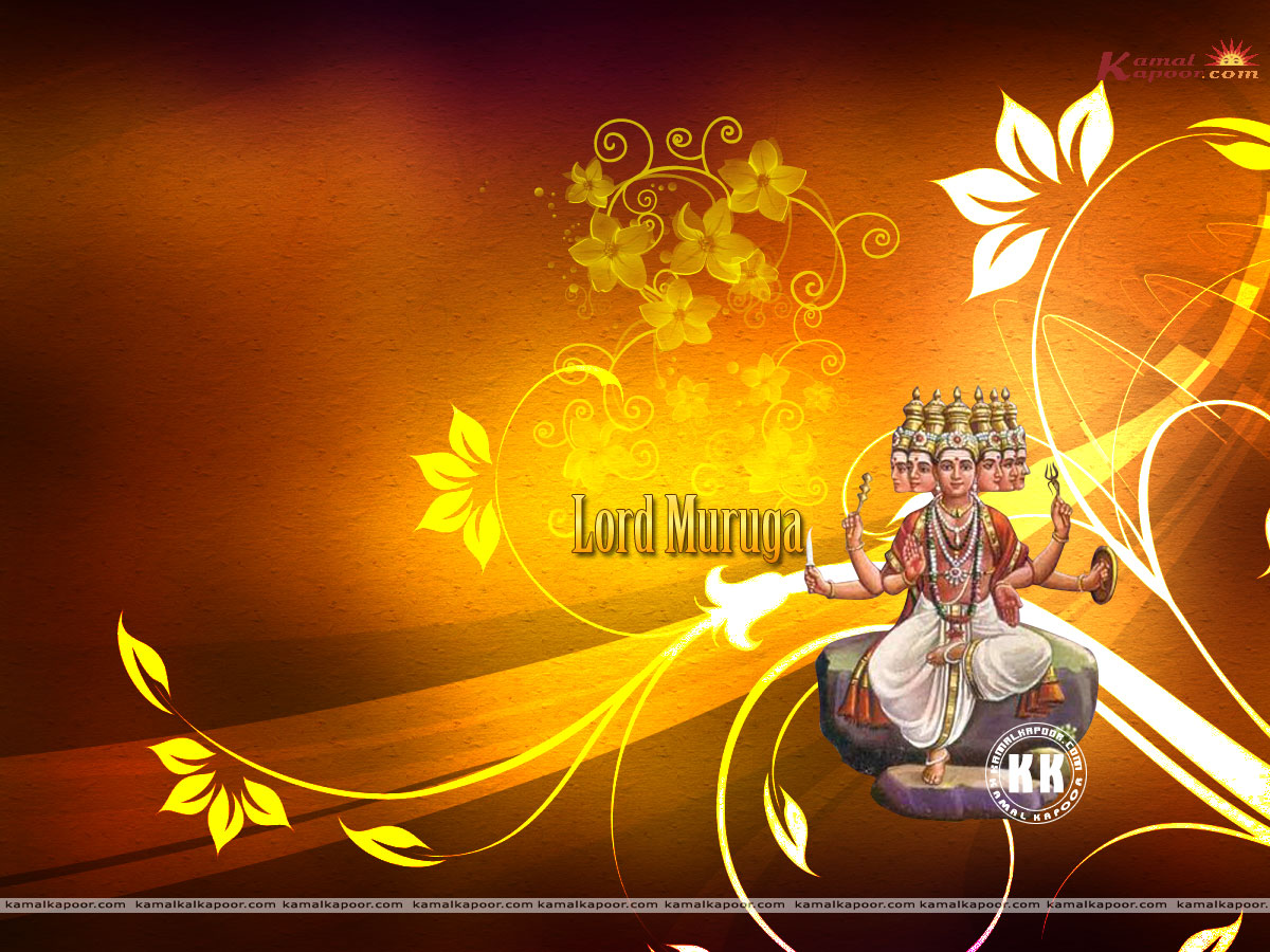 Popular Wallpaper Lord Kartikeya - Muruga2433  Graphic_775551.jpg