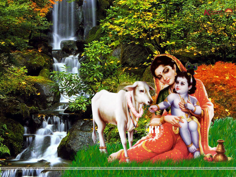 Janmashtami Wallpapers Janmashtami Wallpapers For Pc Janmashtami
