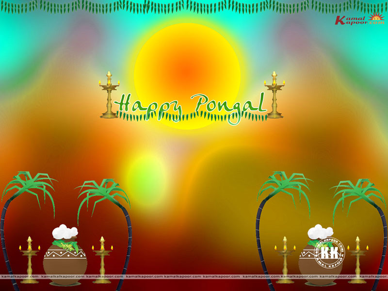 Pongal wallpaper gallery hindu tamil festival pongal pictures pongal wallpaper m4hsunfo