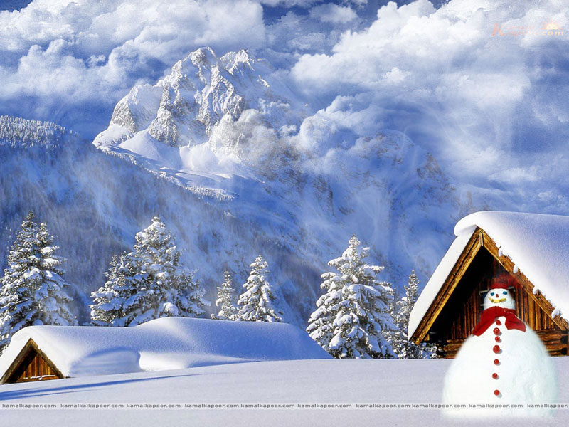 Seasons Wallpaper For Download Beautiful