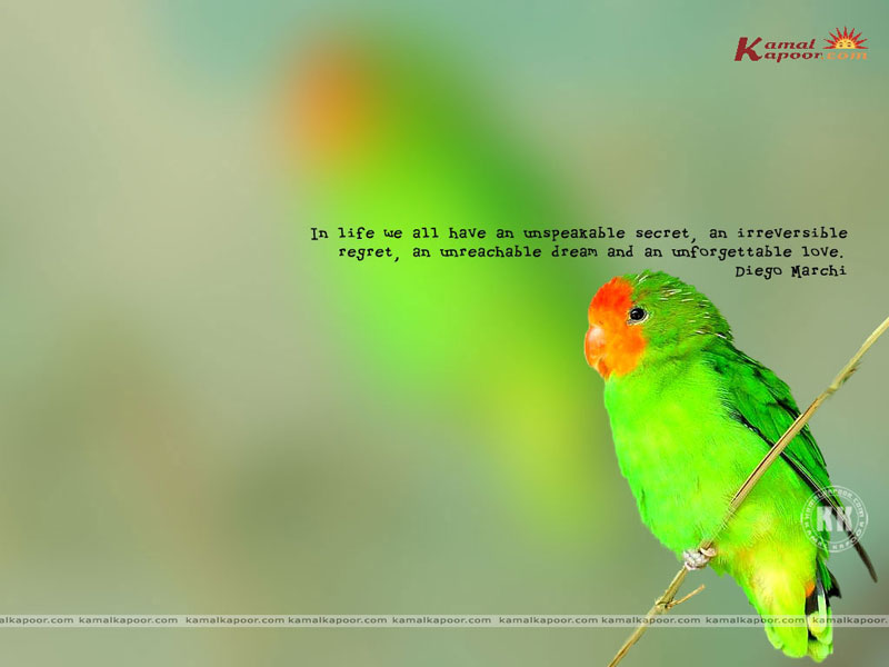 quotation wallpapers. Fact-Quotation Wallpaper