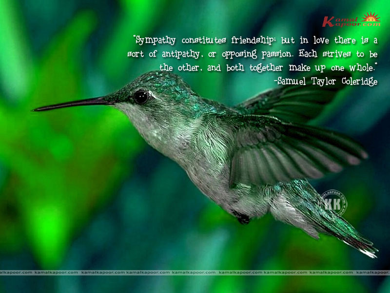Love quotation wallpapers wallpapers with quotes love quotation love quotation wallpaper thecheapjerseys Gallery