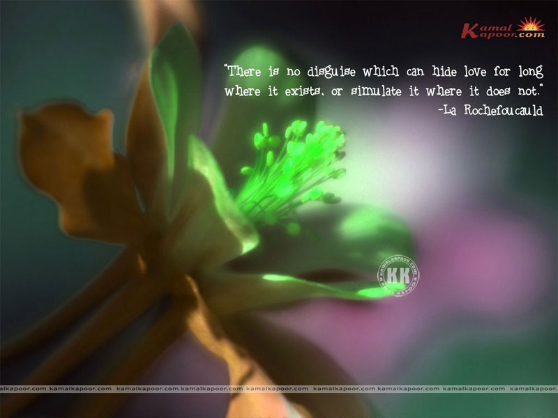 Love Quotation Wallpapers Exclusive Full Screen Wallpapers Of